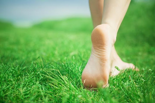 pies-en-la-hierba[3]